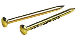 """Picture of BRASS NAIL 5/8"""""""